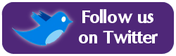 Follow Us on Twitter button.